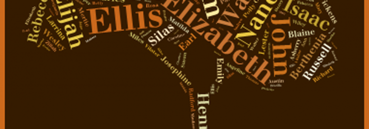 Ellis-wordle-slider